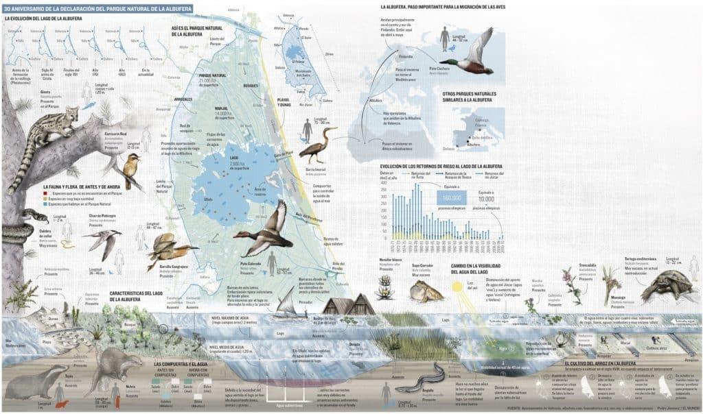 infografia albufera